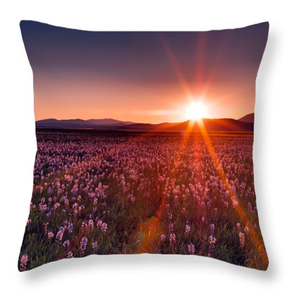 Sun Rays And Wildflowers Throw Pillow by Leland D Howard