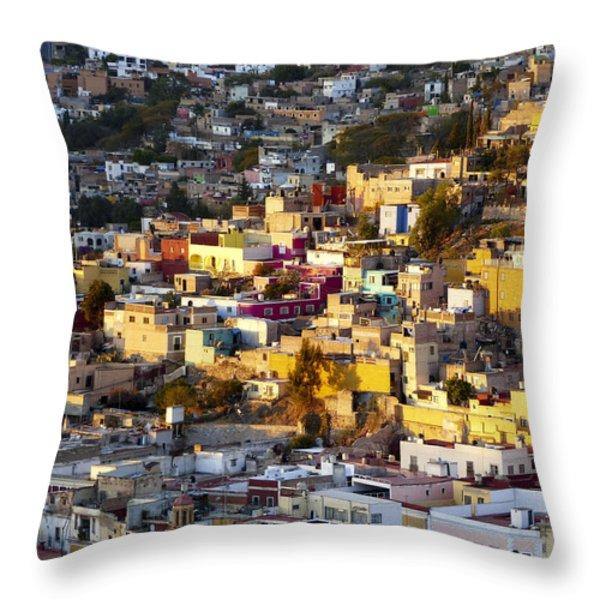 Sun Triangle Throw Pillow by Douglas J Fisher