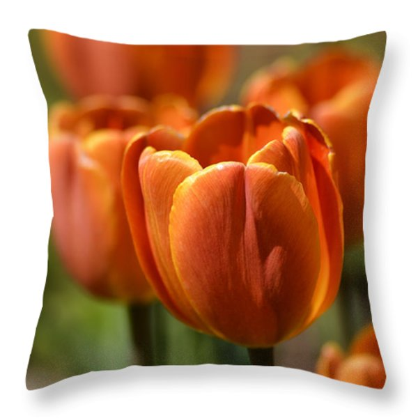 Sunburst Tulips Throw Pillow by Julie Palencia