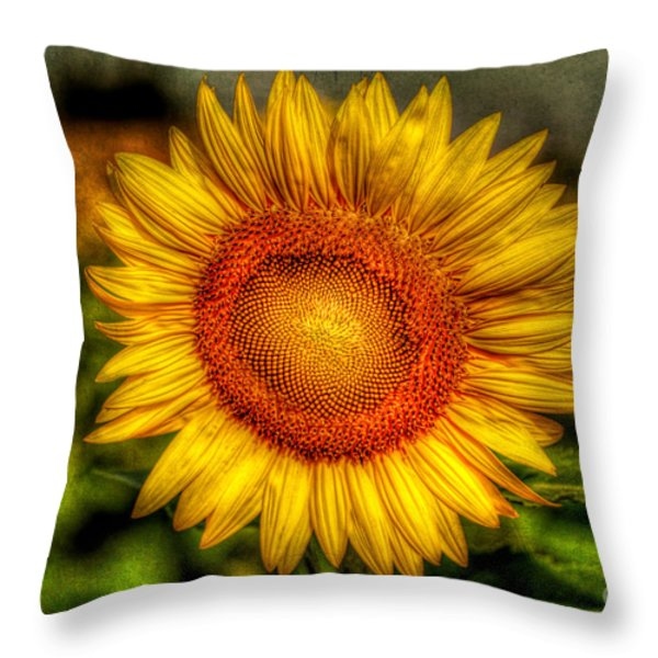 Sunflower Throw Pillow by Adrian Evans