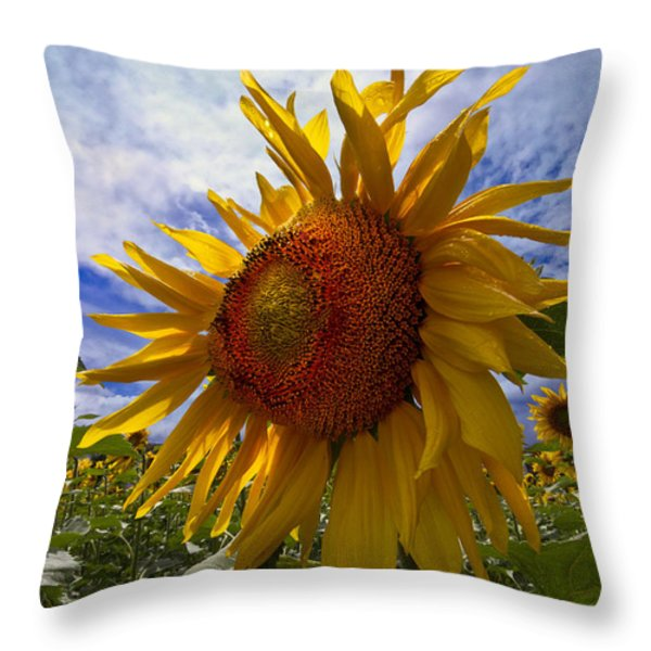 Sunflower Blue Throw Pillow by Debra and Dave Vanderlaan