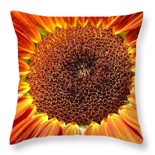 Sunflower Burst Throw Pillow by Kerri Mortenson
