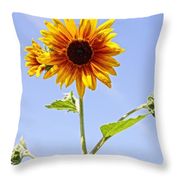 Sunflower in the Sky Throw Pillow by Kerri Mortenson