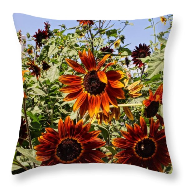 Sunflower Layers Throw Pillow by Kerri Mortenson