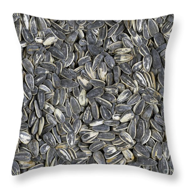 Sunflower Seeds Throw Pillow by Bedros Awak