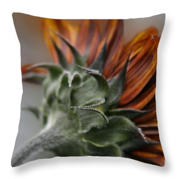 Sunflower Throw Pillow by Sharon Mau