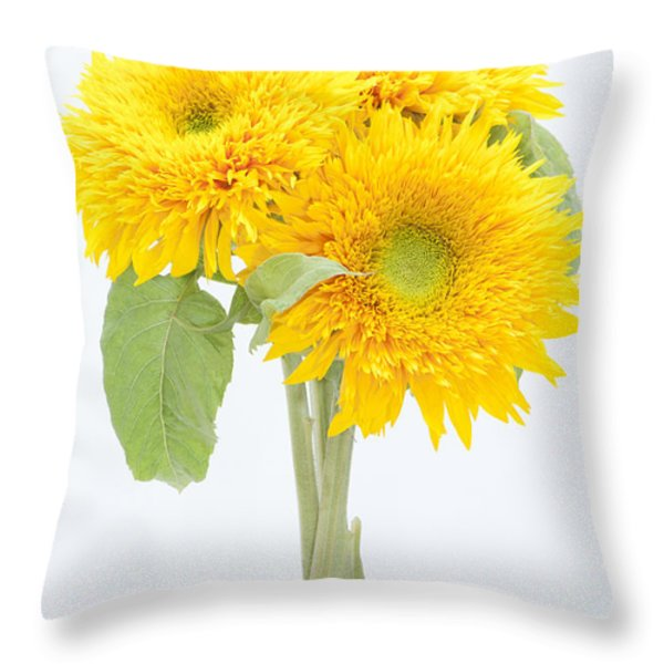 Sunflower Trio Throw Pillow by Anne Gilbert