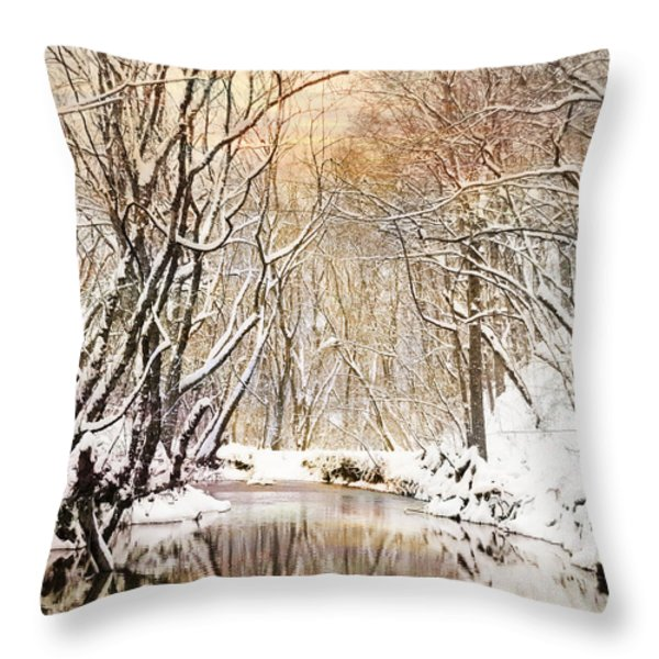 Sunkissed Winter Creek Throw Pillow by Jai Johnson