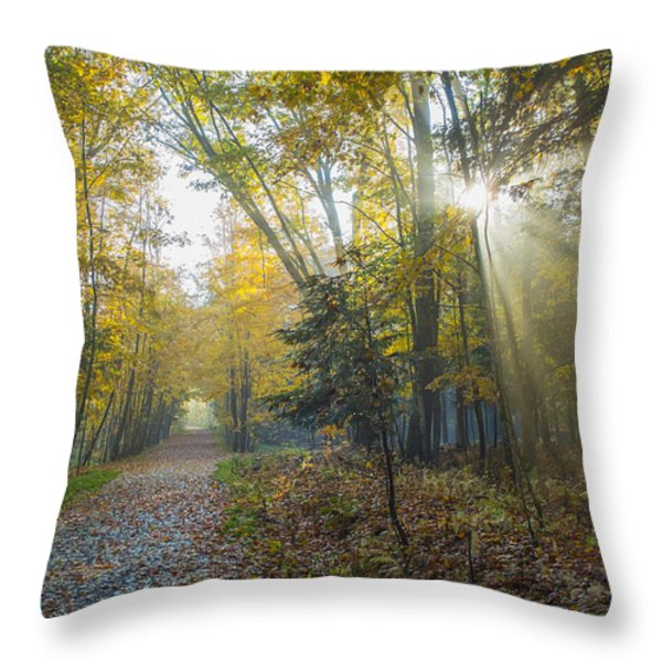 Sunlight Streaming Through The Trees Throw Pillow by Jacques Laurent