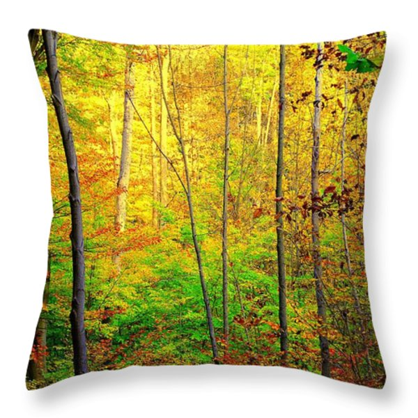 Sunlights Warmth Throw Pillow by Frozen in Time Fine Art Photography