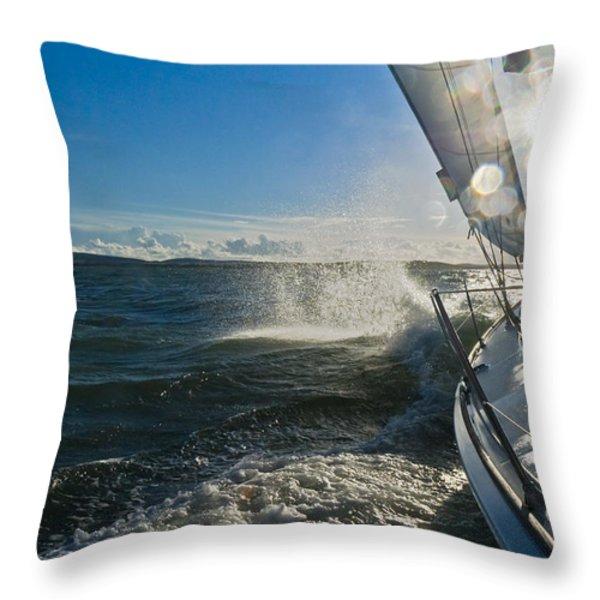 Sunlit Bow Spray Throw Pillow by Gary Eason