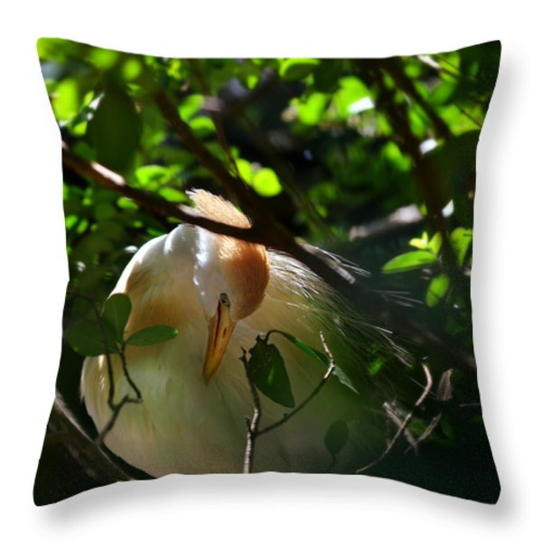sunlit egret Throw Pillow by Laura  Fasulo