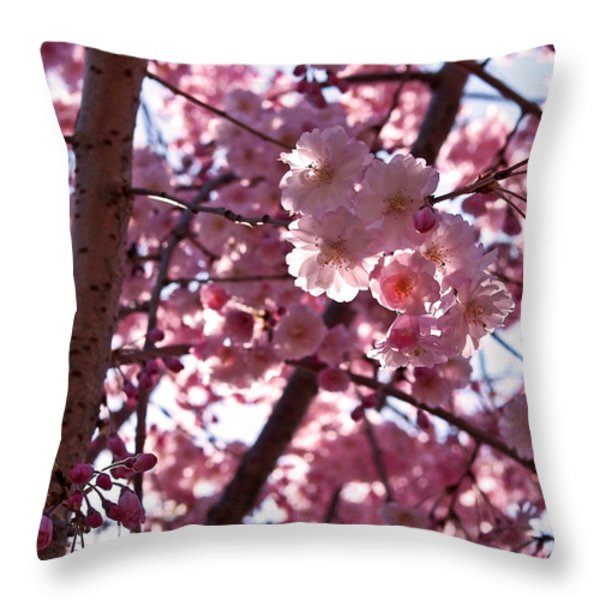 Sunlit Pink Blossoms Throw Pillow by Rona Black