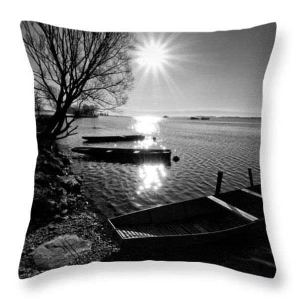 Sunny Day Throw Pillow by Davorin Mance