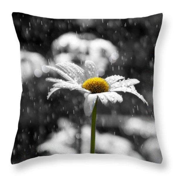 Sunny Disposition Despite Showers Throw Pillow by Lisa Knechtel