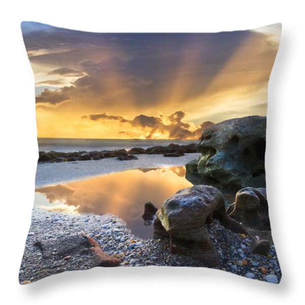 Sunrise Explosion Throw Pillow by Debra and Dave Vanderlaan