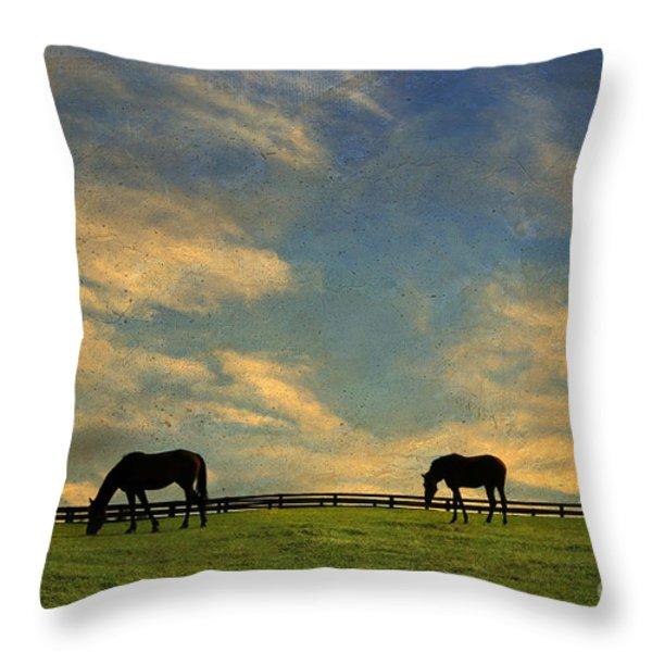 Sunrise Graze Throw Pillow by Darren Fisher