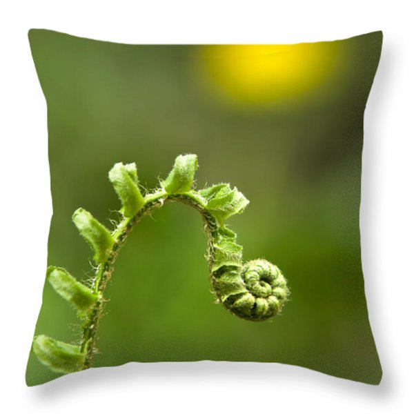Sunrise Spiral Fern Throw Pillow by Christina Rollo