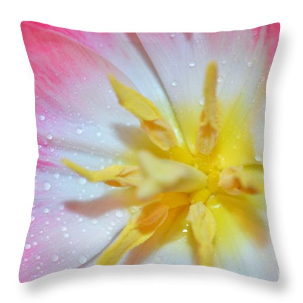 Sunrise Tulip Throw Pillow by Felicia Tica