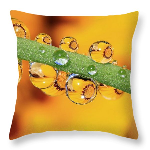 Sunrises Sunsets Throw Pillow by Gary Yost