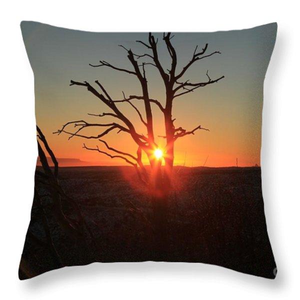 Sunset Bulls Eye Throw Pillow by Adam Jewell