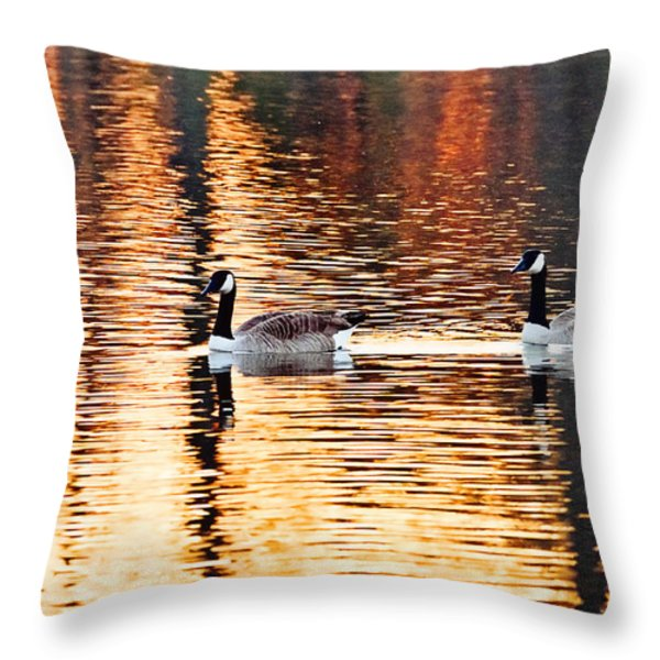 Sunset Cruise Throw Pillow by Scott Pellegrin
