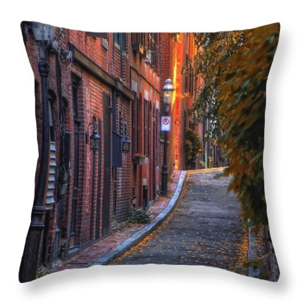 Sunset In Beacon Hill Throw Pillow by Joann Vitali