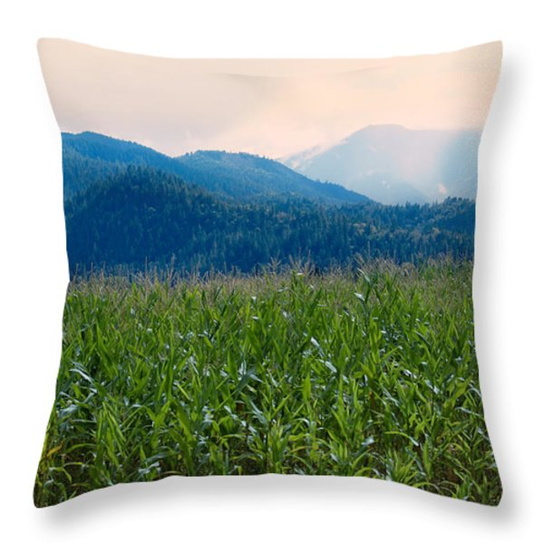 Sunset In The Cornfields Throw Pillow by Melanie Lankford Photography