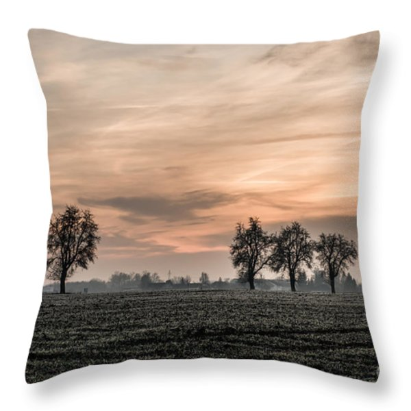 Sunset In The Country - Orange Throw Pillow by Hannes Cmarits