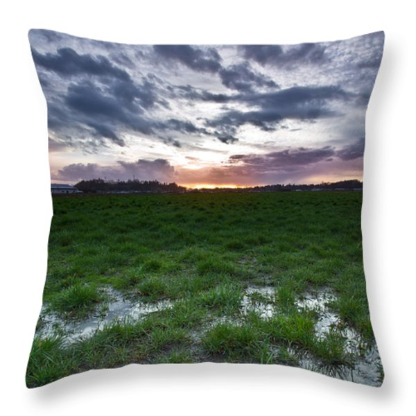 Sunset in the swamp Throw Pillow by Eti Reid