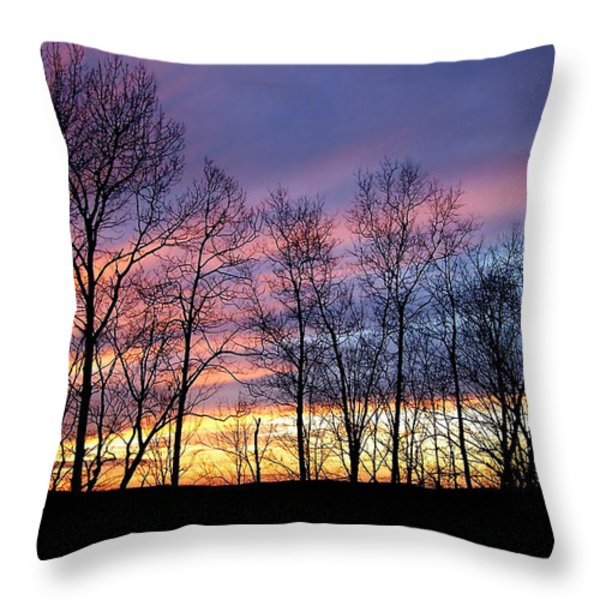 Sunset of the Century Throw Pillow by Christina Rollo