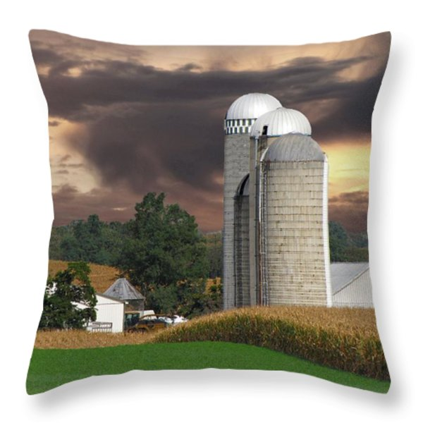 Sunset On The Farm Throw Pillow by David Dehner
