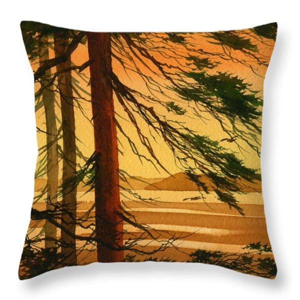 Sunset Splendor Throw Pillow by James Williamson