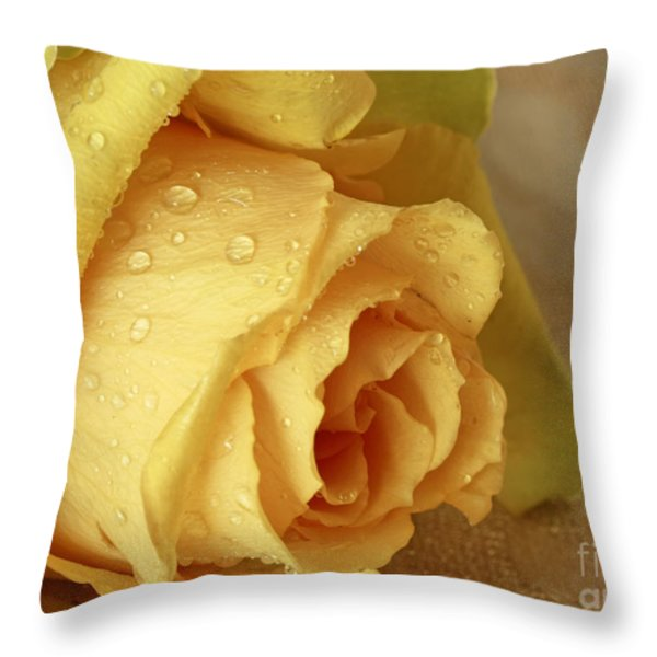 Sunshine Delight Yellow Rose Throw Pillow by Inspired Nature Photography By Shelley Myke