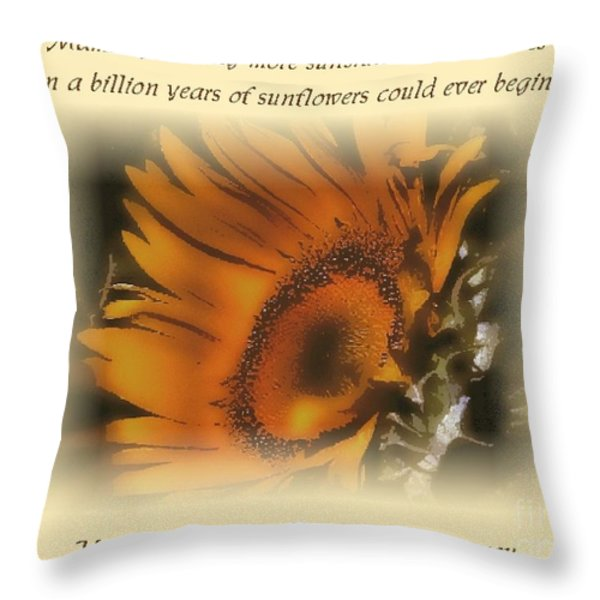 Sunshine For the Ages Throw Pillow by Don Wright