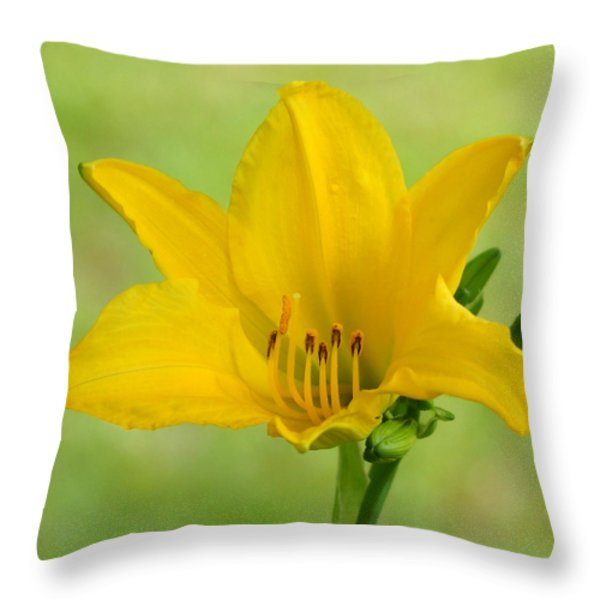 Sunshine In A Flower Throw Pillow by Kim Pate
