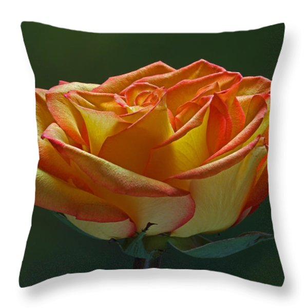Sunshine On My Shoulders Throw Pillow by Juergen Roth
