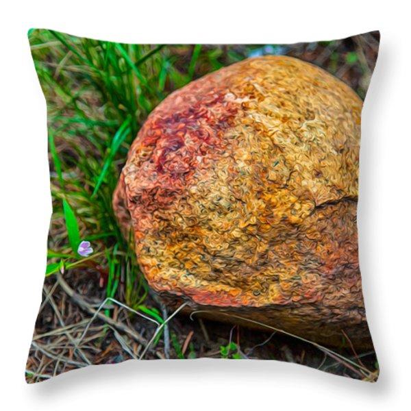 Sunshine Rock Throw Pillow by Omaste Witkowski