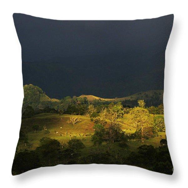 Sunspot after the storm Throw Pillow by Heiko Koehrer-Wagner