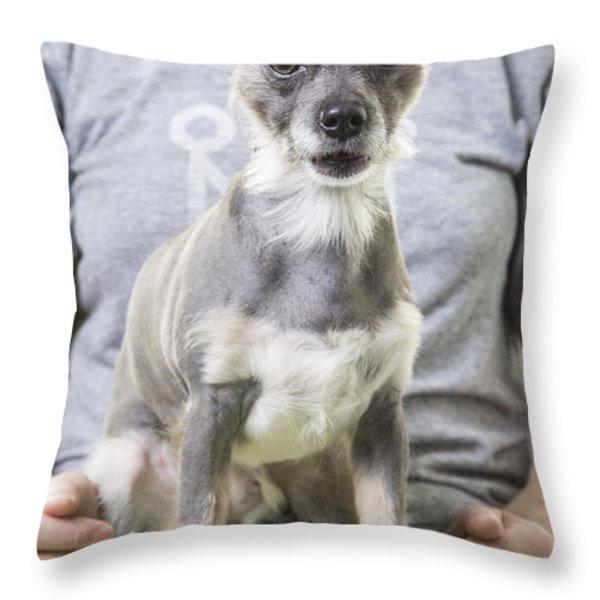 Surprise Throw Pillow by Edward Fielding