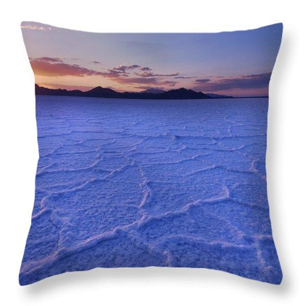 Surreal Salt Throw Pillow by Chad Dutson
