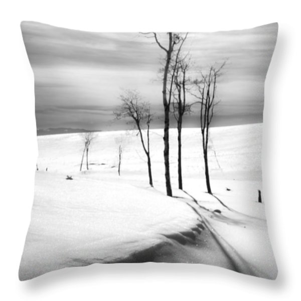 Surreal Snowscape 2 Throw Pillow by Theresa Tahara