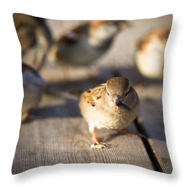 Survival Of The Fittest Throw Pillow by Alexander Senin