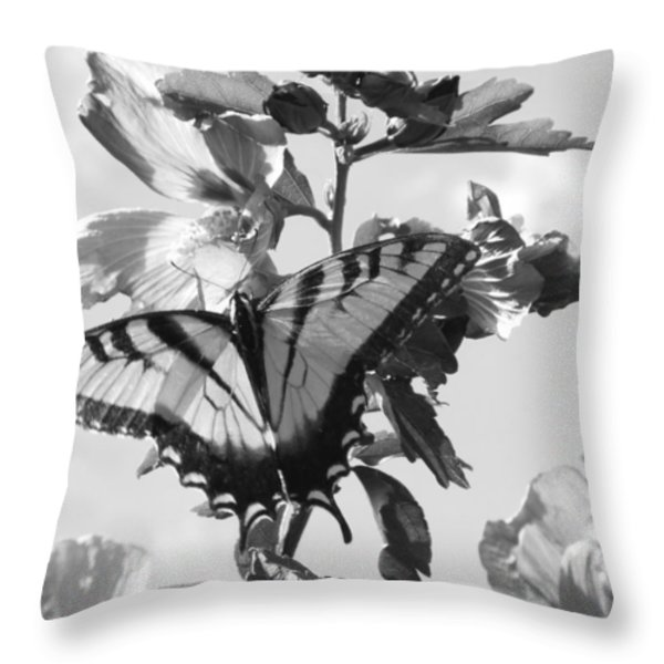 Swallowtail And Rose Of Sharon Bw Throw Pillow by Diannah Lynch