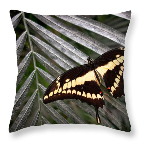 Swallowtail Butterfly Throw Pillow by Olivier Le Queinec