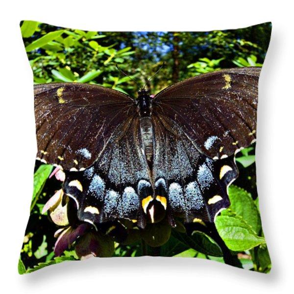 Swallowtail Butterfly Throw Pillow by Susan Leggett