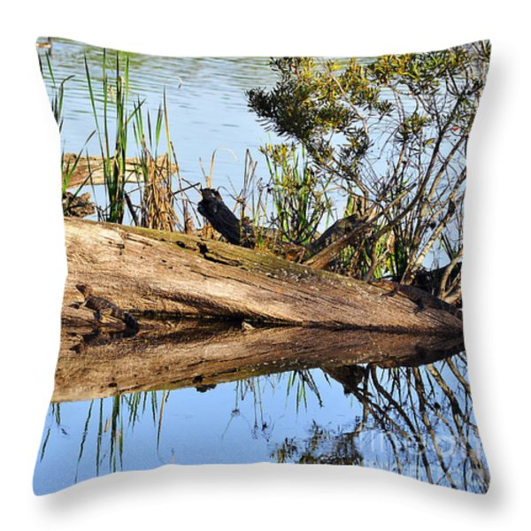 Swamp Scene Throw Pillow by Al Powell Photography USA