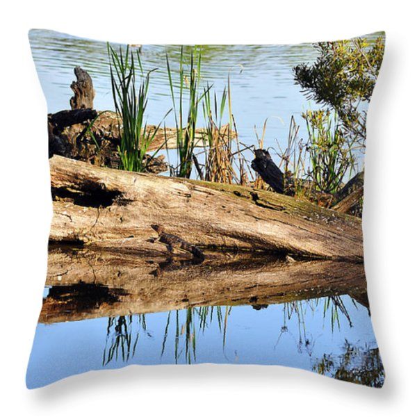 Swamp Scene Throw Pillow by Al Powell Photography USA