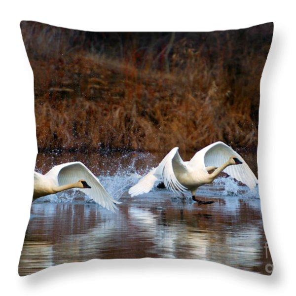Swan Lake Throw Pillow by Mike  Dawson