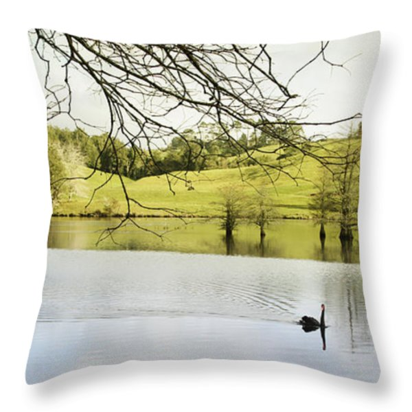 Swan Throw Pillow by Les Cunliffe